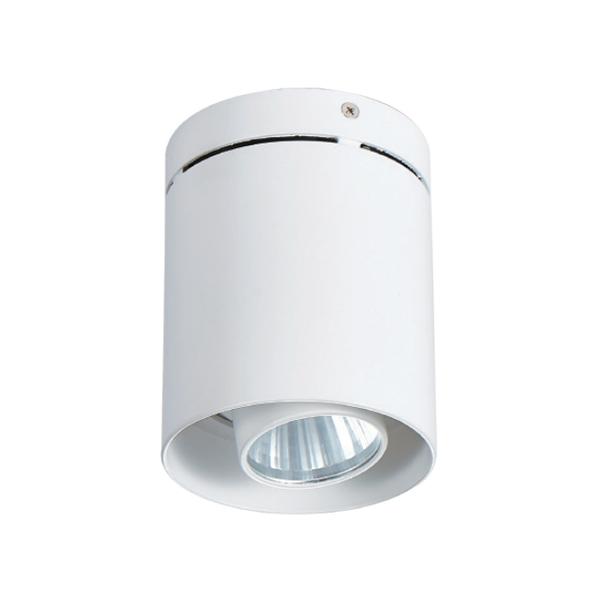 明装筒灯    DW-CC-1057