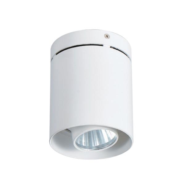 明装筒灯    DW-CC-1056